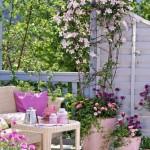 5-combinatii de plante cu flori roz decor balcon mic