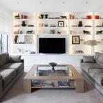 5-doua canapele asezate fata in fata in amenajarea unui living modern