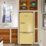 5-dulap proiectat pe peretele de deasupra frigiderului din bucatarie