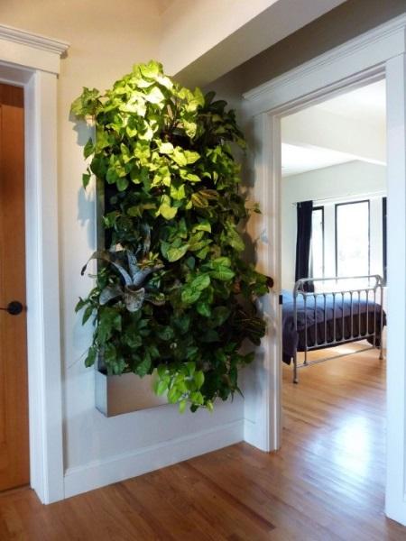 5-exemplu amenajare gradina verticala pe holul unui apartament