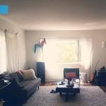 5-living intunecos cu mobila in culori inchise inainte amenajare