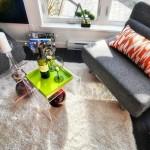 5-loc relaxare living mic casa prefabricata din lemn 37 mp