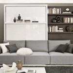 5-mobilier living cu pat rabatabil integrat