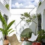 5-mobilier suplu si plante plantate in ghiveci decor curte mica