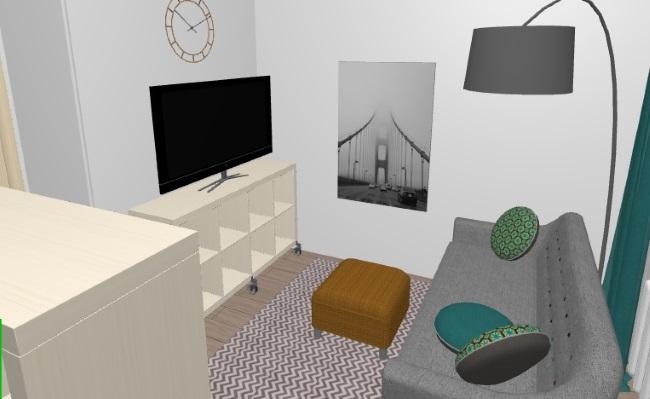 5-zona de living cu tv si canapea in singura camera a garsonierei