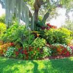 6-aranjament floral spectaculos in jurul unui copac din gradina