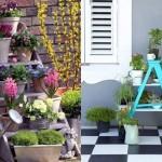 6-decoratiuni si flori pentru infrumusetarea curtii gradinii si terasei casei