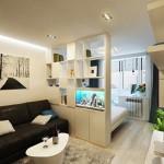 6-etajera separare zona de dormit de living amenajare garsoniera