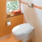 6-exemplu rezervor vas wc suspendat cu dubla actionare