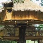 6-exterior casute din lemn in copac Dol de Bretagne Franta