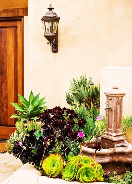 6-idee amenajare colt curte cu plante suculente