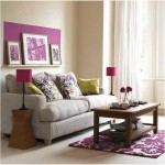 6-living modern mic decorat in gri si violet