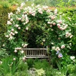 6-loc secret de relaxare amenajat in gradina casei