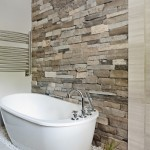 6-perete piatra naturala amenajare baie frumoasa cu cada stativ