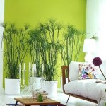 6-plante verzi decor living amenajat in stil modern