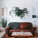 6-polita suport tablouri pe peretele gol din spatele canapelei din living