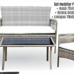 6-set mobilier terasa imitatie rattan magazin Praktiker