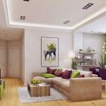 6-vedere din living spre holul apartamentului
