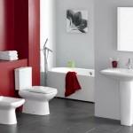 7-baie moderna mare pereti decorati in alb si rosu si pardoseala placata cu gresie gri