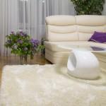 7-covor alb fir lung decor living modern amenajat in alb si violet