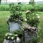 7-flori albe plantate in vase din tabla aranjament decorativ curte si gradina