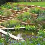 7-gradina terasata cu plante si helesteu artificial