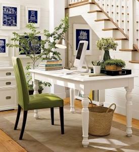 7-interior alb accente cromatice venil si plante naturale