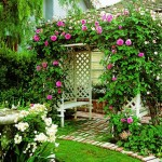 7-pergola din lemn imbracata cu trandafiri cataratori