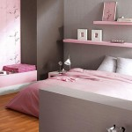7-polite roz decor dormitor modern gri