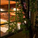 7-vedere din exterior in interiorul camerei amenajate in garajul unei case din Brasov