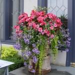 8-aranjament floral in ghiveci din flori roz si lila