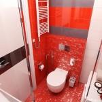 8-baie moderna mica finisata in alb rosu si gri