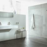 8-baie moderna minimalista cu dusul montat in spatele unui perete din sticla transparenta
