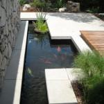 8-bazin cu apa si pesti decor curte moderna minimalista