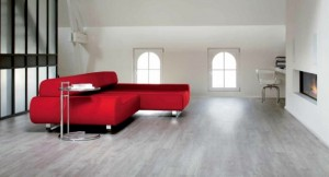 8-canapea rosie parchet gri decor living modern