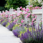 8-combinatii de flori in culori pastelate delicate