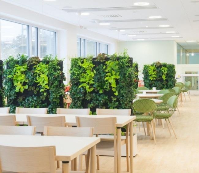 8-paravane despartitoare din gradini verticale cu plante verzi in amenajarea unei cafenele