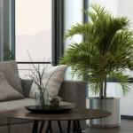 8-planta de apartament decor living modern