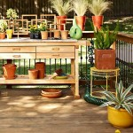 9-amenajarea unei mini gradini botanice pe terasa casei