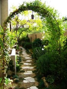 9-bolta cu trandafiri cataratori intr-o curte verde amenajata frumos