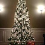 9-brad de Craciun decorat numai cu luinite tendinte 2018
