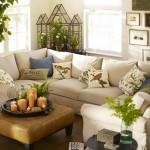 9-plante verzi si pernute decorative colorate decor calduros living