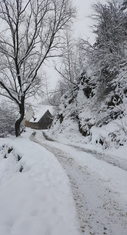 9 ulita iarna sat Talmacel Marginime