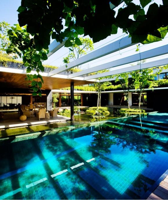 Cluny-House piscina gradina