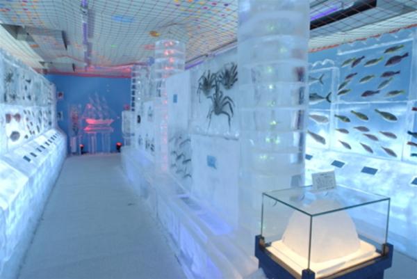 acvariul din gheata japonia