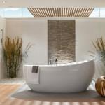 amenajare piatra decorativa baie moderna