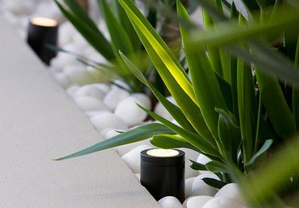 aranjament decorativ pietre plante verzi si stalpisori iluminat