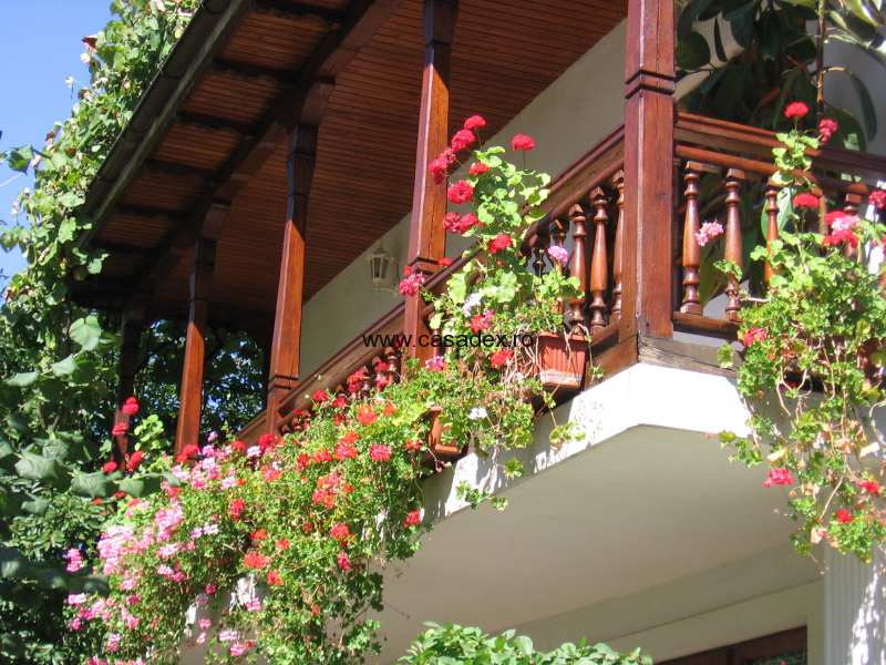 Terasa Casei  Cu Flori