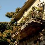 balcon pache protopopescu