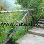 balustrada trepte ramuri